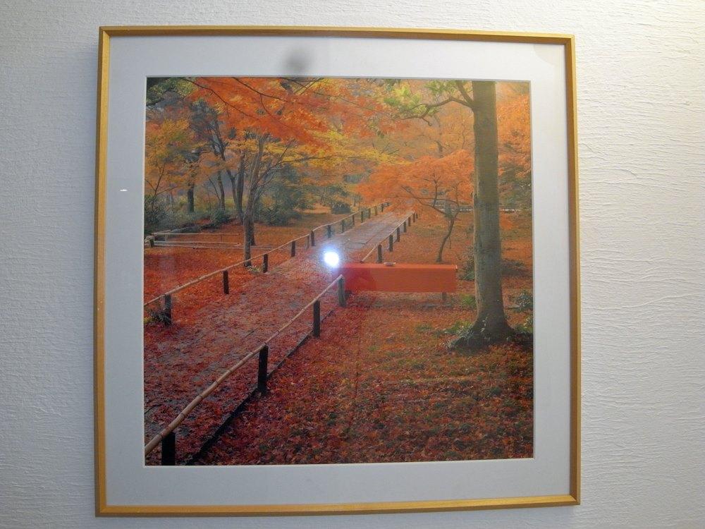 院内ポスターは京都宝筐院の紅葉。一度行ってみたいですね。